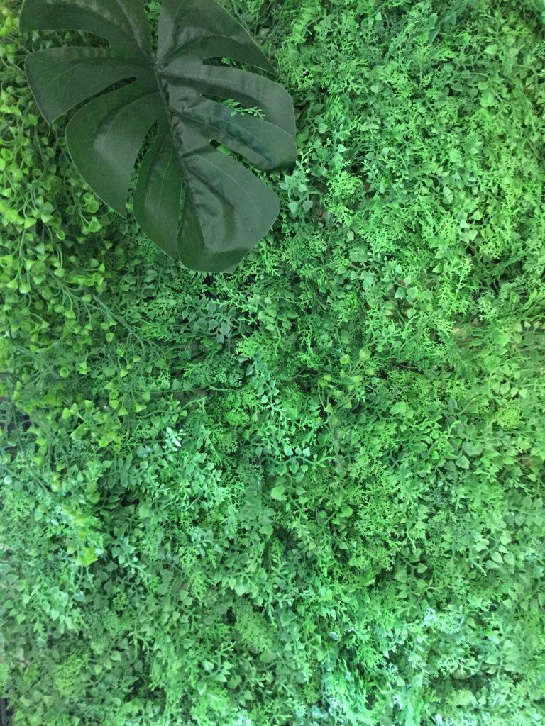 botanical wall